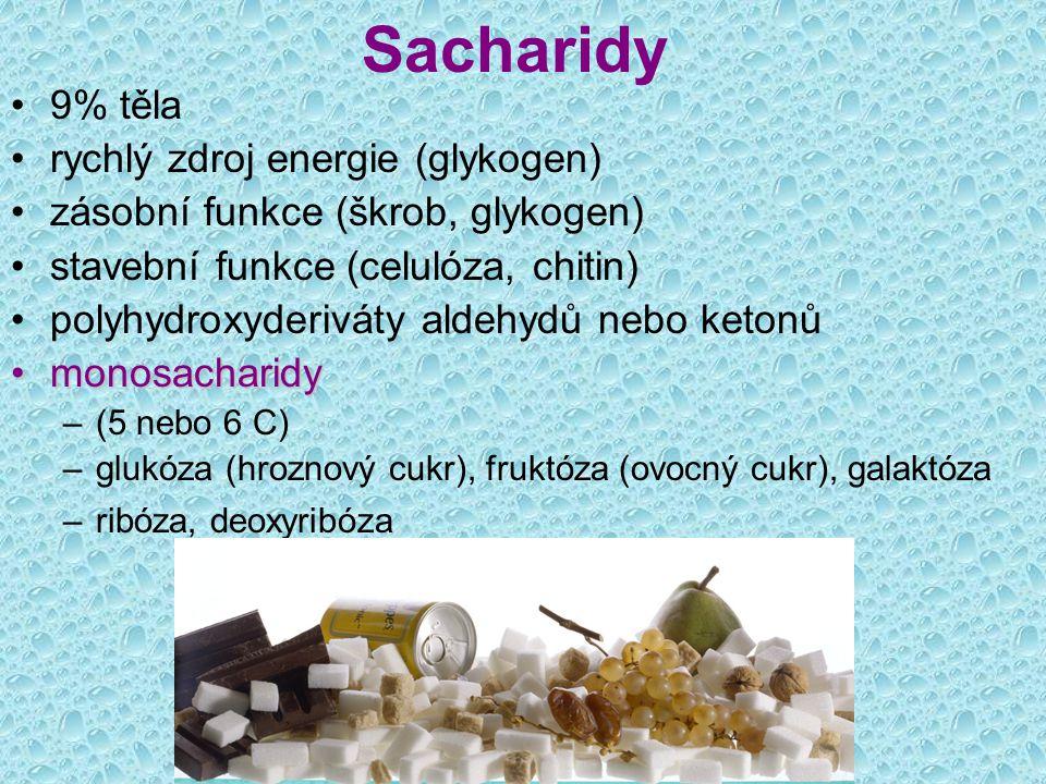 Sacharidy disacharidydisacharidy –dva monosacharidy –sacharóza (řepný / třtinový cukr) – glukóza + fruktóza –maltóza (sladový cukr) – glukóza + glukóza –laktóza (mléko) – glukóza + galaktóza polysacharidypolysacharidy –více monosacharidů –škrob –glykogen –celulóza, chitin glykoproteiny = bílkovina + cukr