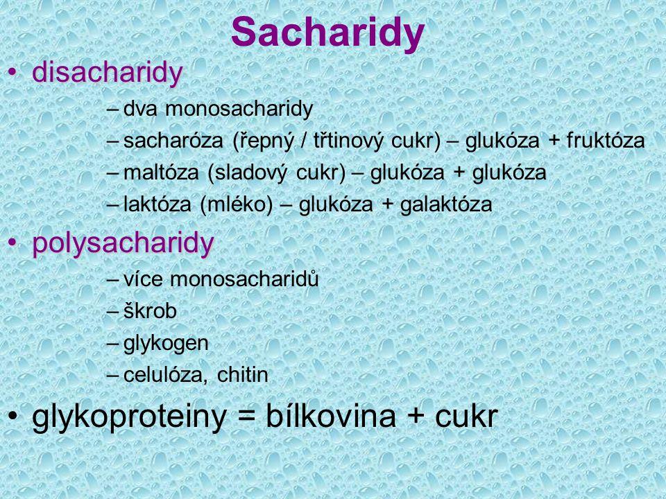 Sacharidy disacharidydisacharidy –dva monosacharidy –sacharóza (řepný / třtinový cukr) – glukóza + fruktóza –maltóza (sladový cukr) – glukóza + glukóz