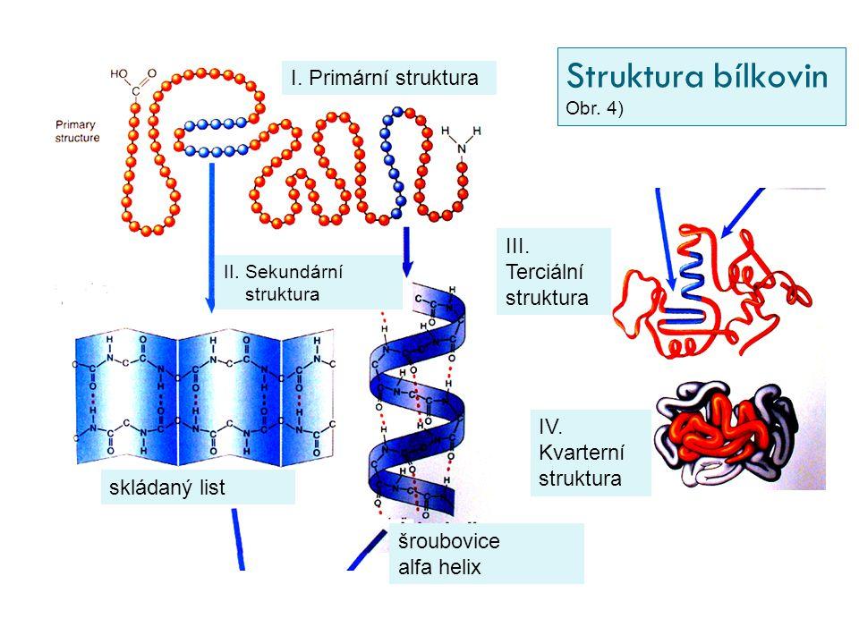 I. Primární struktura II. Sekundární struktura skládaný list šroubovice alfa helix IV. Kvarterní struktura III. Terciální struktura Struktura bílkovin