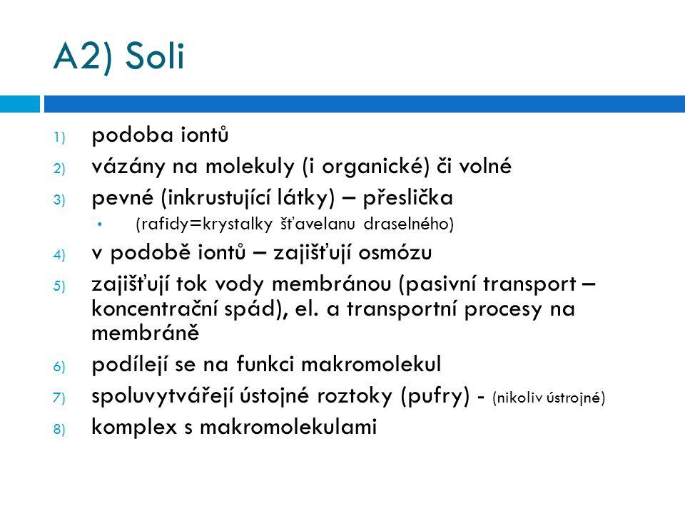 A2) Soli 1) podoba iontů 2) vázány na molekuly (i organické) či volné 3) pevné (inkrustující látky) – přeslička (rafidy=krystalky šťavelanu draselného