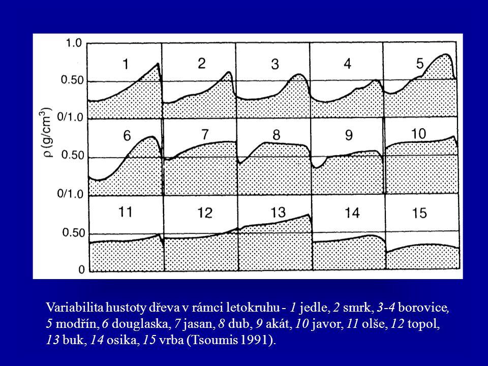 Variabilita hustoty dřeva v rámci letokruhu - 1 jedle, 2 smrk, 3-4 borovice, 5 modřín, 6 douglaska, 7 jasan, 8 dub, 9 akát, 10 javor, 11 olše, 12 topol, 13 buk, 14 osika, 15 vrba (Tsoumis 1991).