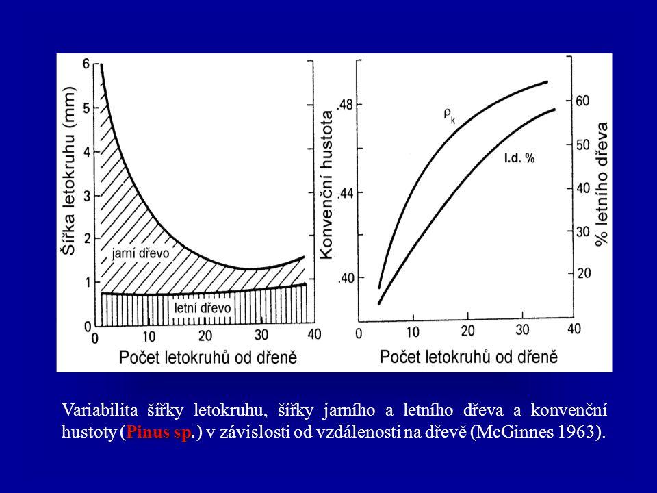 Výpočet hustoty (kg/m 3 ) kde ρ W – hustota při dané vlhkosti; m W - hmotnost při dané vlhkosti; a W, b W, l W – rozměry tělíska (šířka, tloušťka, dél