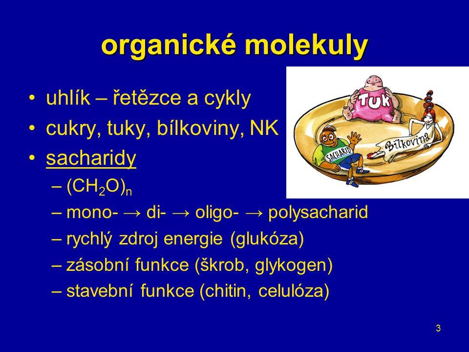 3 organické molekuly uhlík – řetězce a cykly cukry, tuky, bílkoviny, NK sacharidy –(CH 2 O) n –mono- → di- → oligo- → polysacharid –rychlý zdroj energ