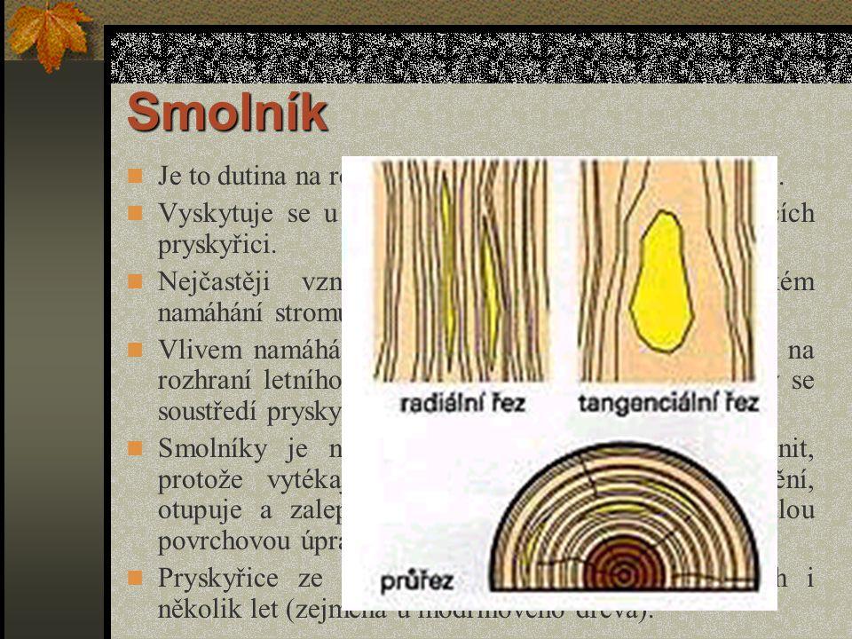 Prosmolení Vzniká abnormálním prosycením dřeva pryskyřicí na velké ploše nebo jen v určitém místě, obvykle v blízkosti otevřeného nebo zarostlého poranění stromu.