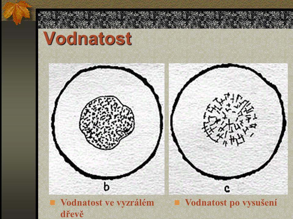 Vodnatost Je to abnormální prosycení dřeva vodou, které se vyskytuje především na obvodu jádra nebo v místě vyzrálého dřeva.
