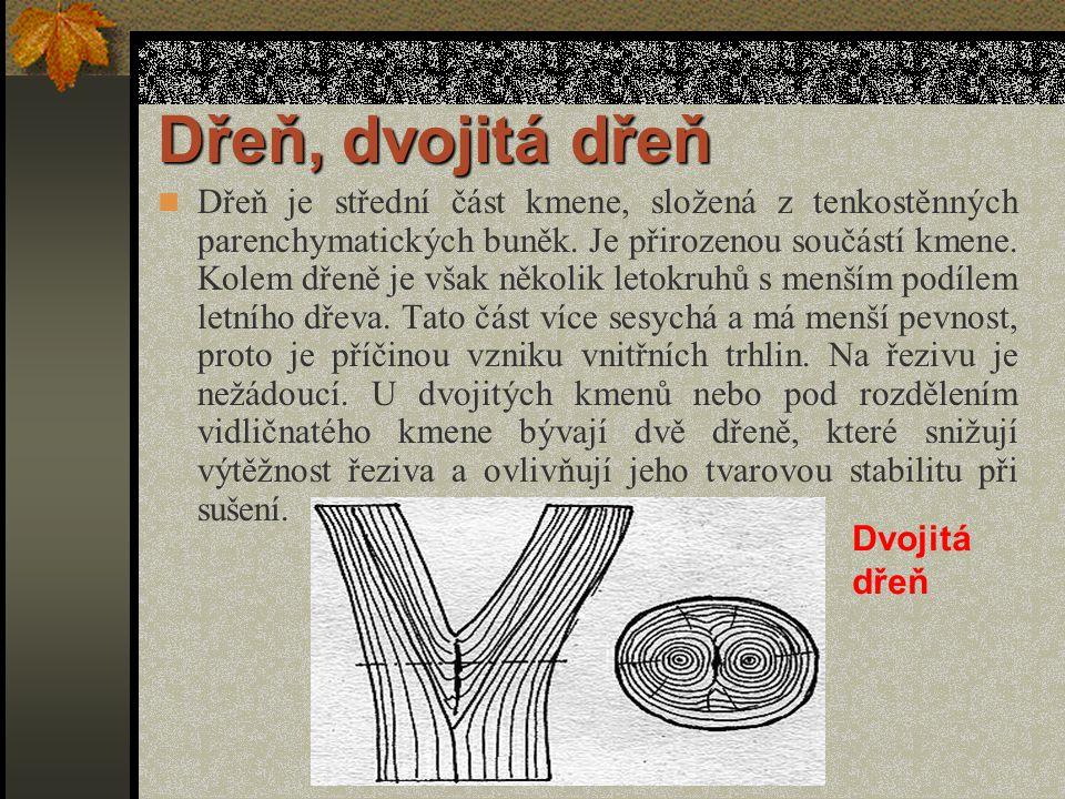 Vady struktury dřeva a nepravé jádro K nejdůležitějším a nejčastějším vadám struktury dřeva patří : - dřeň, dvojitá dřeň, - dvojitá běl, - točitost vláken, - zvlnění vláken, - závitek, - prosmolení, - smolník, - reakční dřevo, - vodnatost, - nepravé jádro.