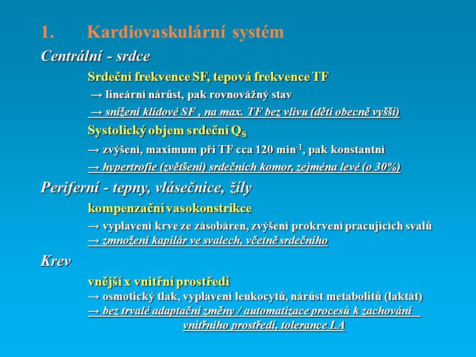 1. Kardiovaskulární systém Centrální - srdce Srdeční frekvence SF, tepová frekvence TF → lineární nárůst, pak rovnovážný stav → lineární nárůst, pak r