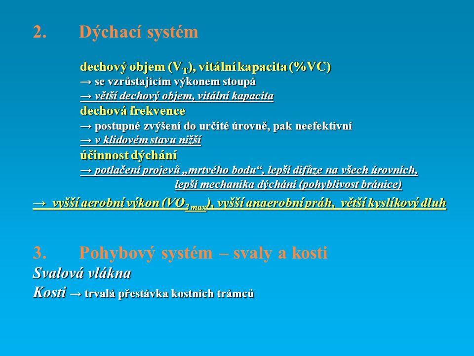 2. Dýchací systém dechový objem (V T ), vitální kapacita (%VC) → se vzrůstajícím výkonem stoupá → větší dechový objem, vitální kapacita dechová frekve