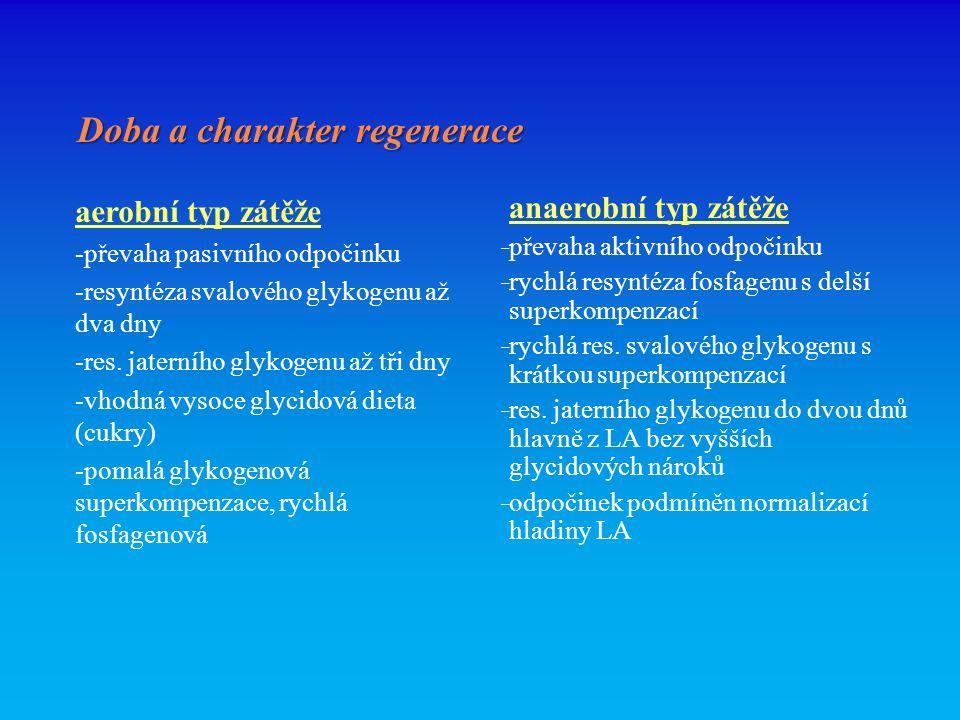 Doba a charakter regenerace aerobní typ zátěže -převaha pasivního odpočinku -resyntéza svalového glykogenu až dva dny -res.