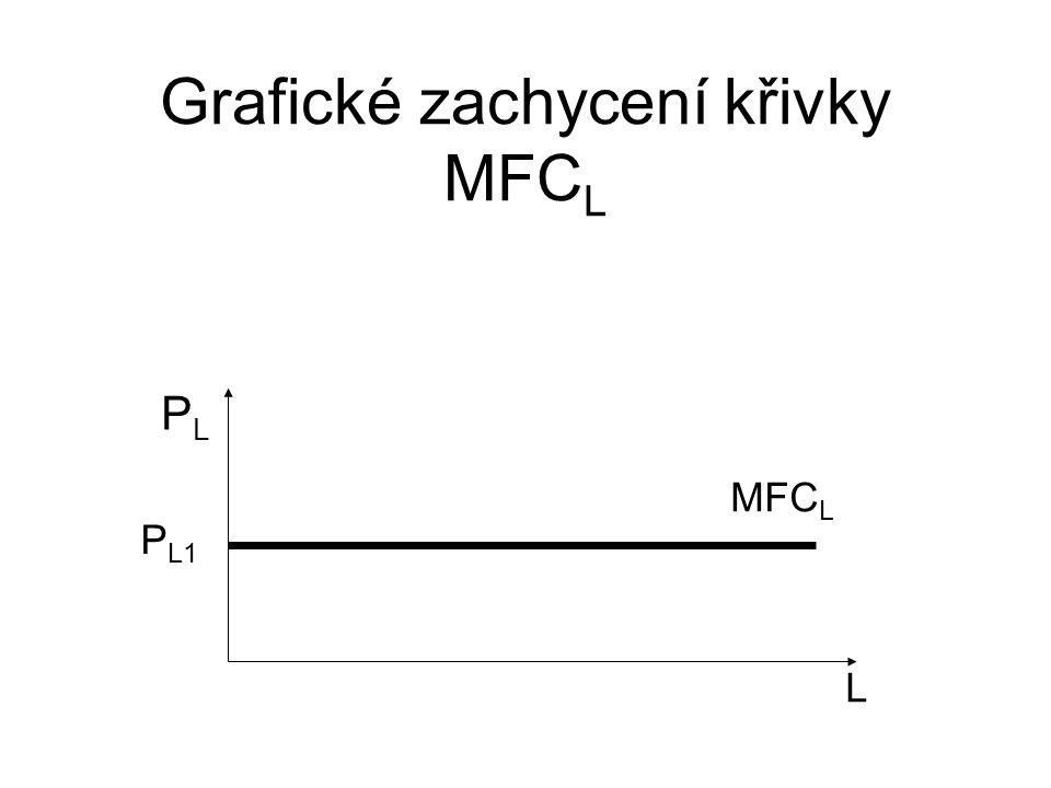 Grafické zachycení křivky MFC L L PLPL P L1 MFC L