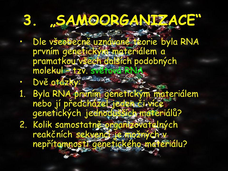"""3. """"SAMOORGANIZACE"""" Dle všeobecně uznávané teorie byla RNA prvním genetickým materiálem a pramatkou všech dalších podobných molekul – tzv. světová RNA"""