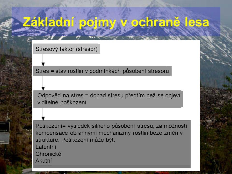 Stresový faktor (stresor) Stres = stav rostlin v podmínkách působení stresoru Odpověď na stres = dopad stresu předtím než se objeví viditelné poškozen