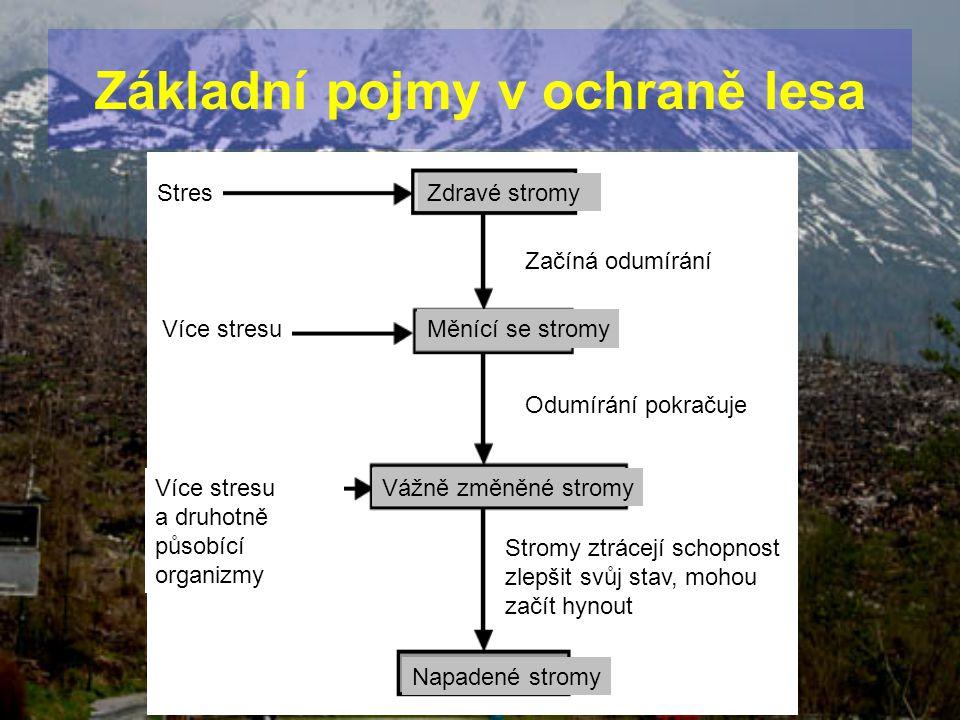 StresZdravé stromy Více stresu Začíná odumírání Měnící se stromy Odumírání pokračuje Více stresu a druhotně působící organizmy Vážně změněné stromy Na