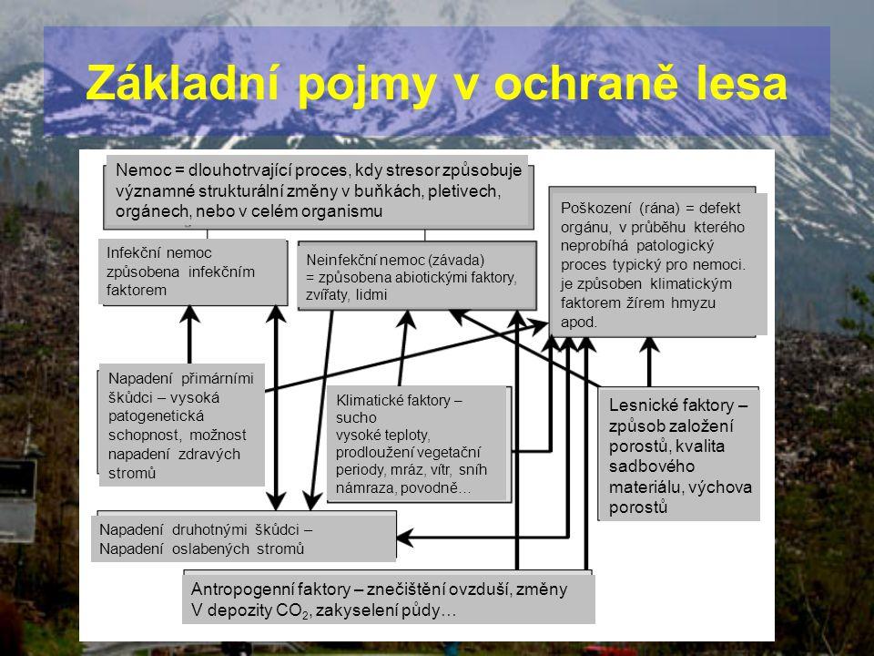 Základní pojmy v ochraně lesa Nemoc = dlouhotrvající proces, kdy stresor způsobuje významné strukturální změny v buňkách, pletivech, orgánech, nebo v