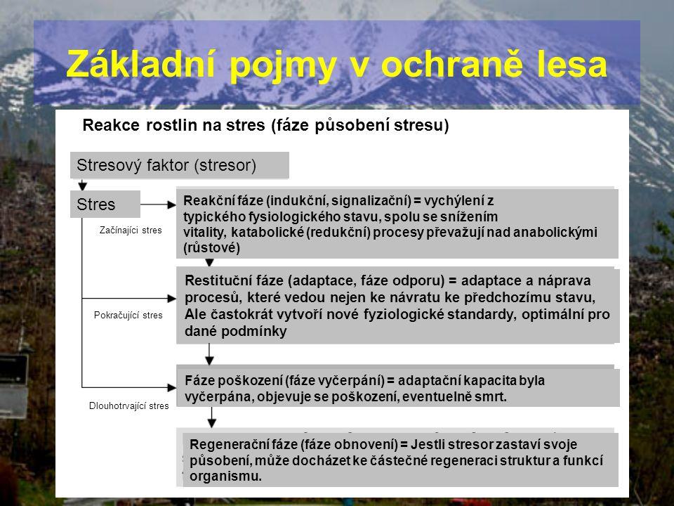Základní pojmy v ochraně lesa Reakce rostlin na stres (fáze působení stresu) Stresový faktor (stresor) Stres Začínajíci stres Pokračující stres Dlouho