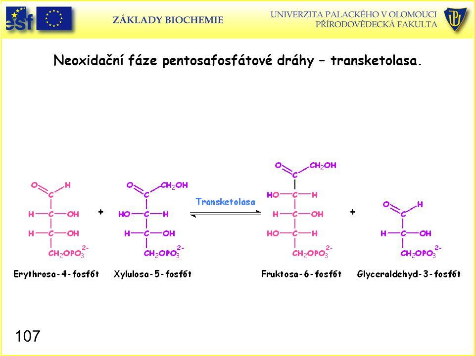 107 Neoxidační fáze pentosafosfátové dráhy – transketolasa.