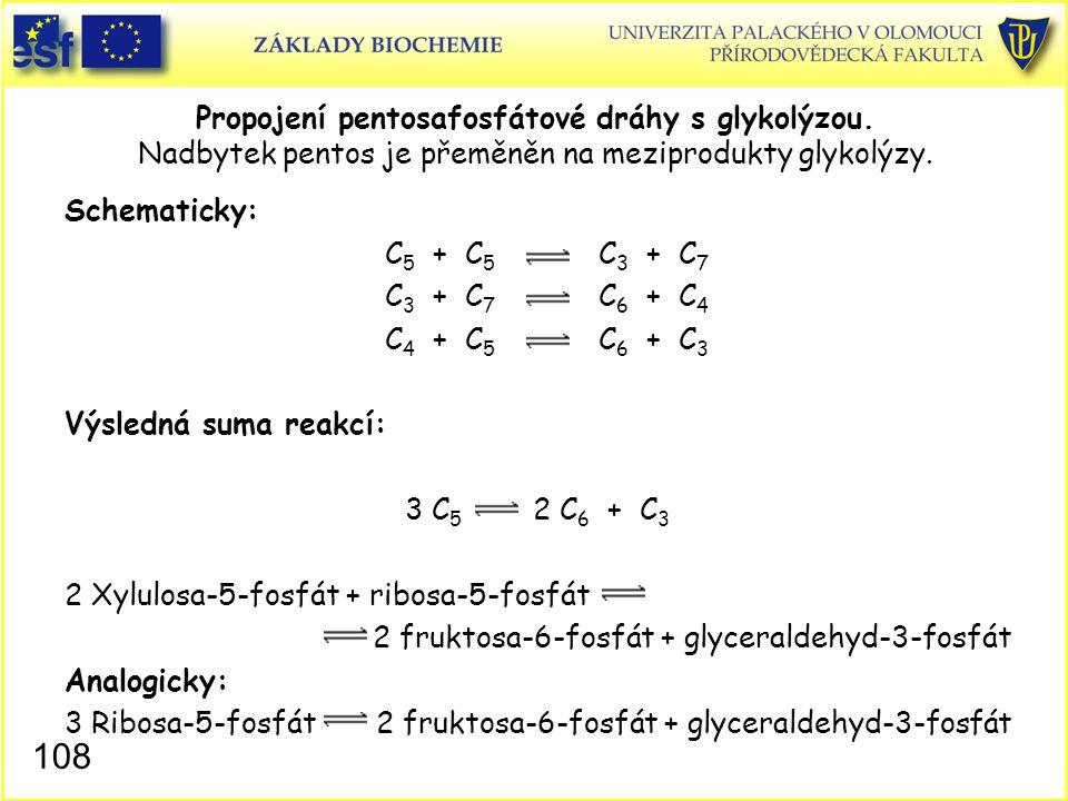 108 Propojení pentosafosfátové dráhy s glykolýzou. Nadbytek pentos je přeměněn na meziprodukty glykolýzy. Schematicky: C 5 + C 5 C 3 + C 7 C 3 + C 7 C