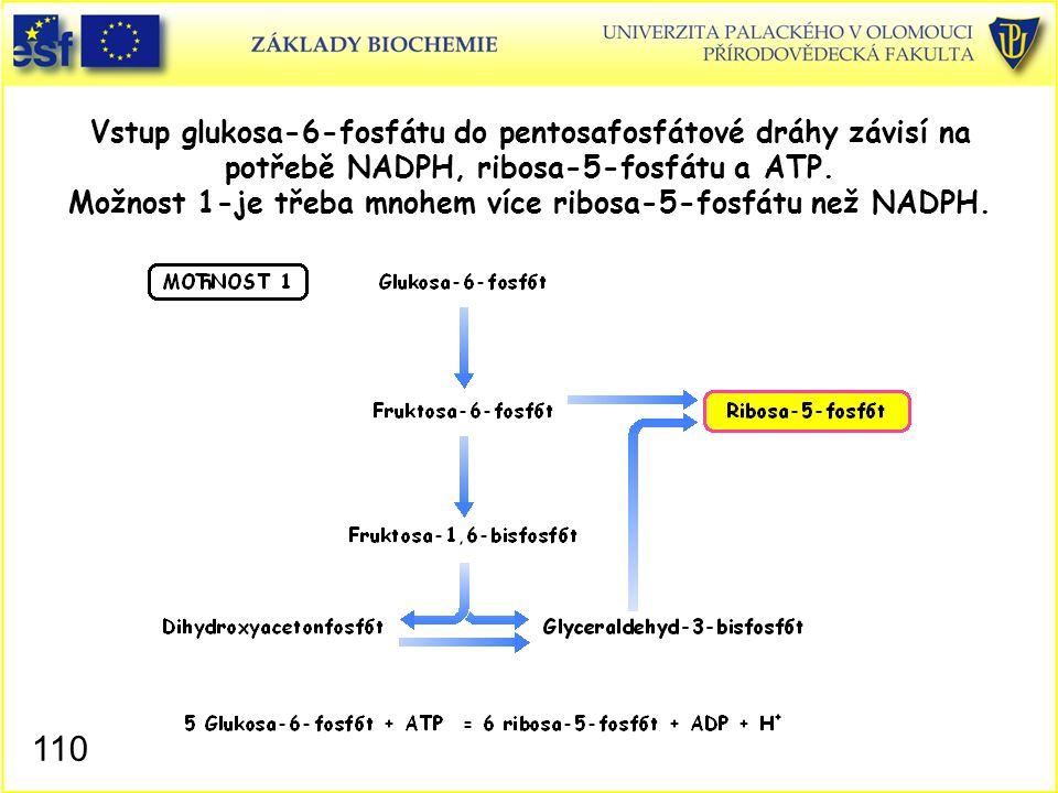 110 Vstup glukosa-6-fosfátu do pentosafosfátové dráhy závisí na potřebě NADPH, ribosa-5-fosfátu a ATP. Možnost 1-je třeba mnohem více ribosa-5-fosfátu