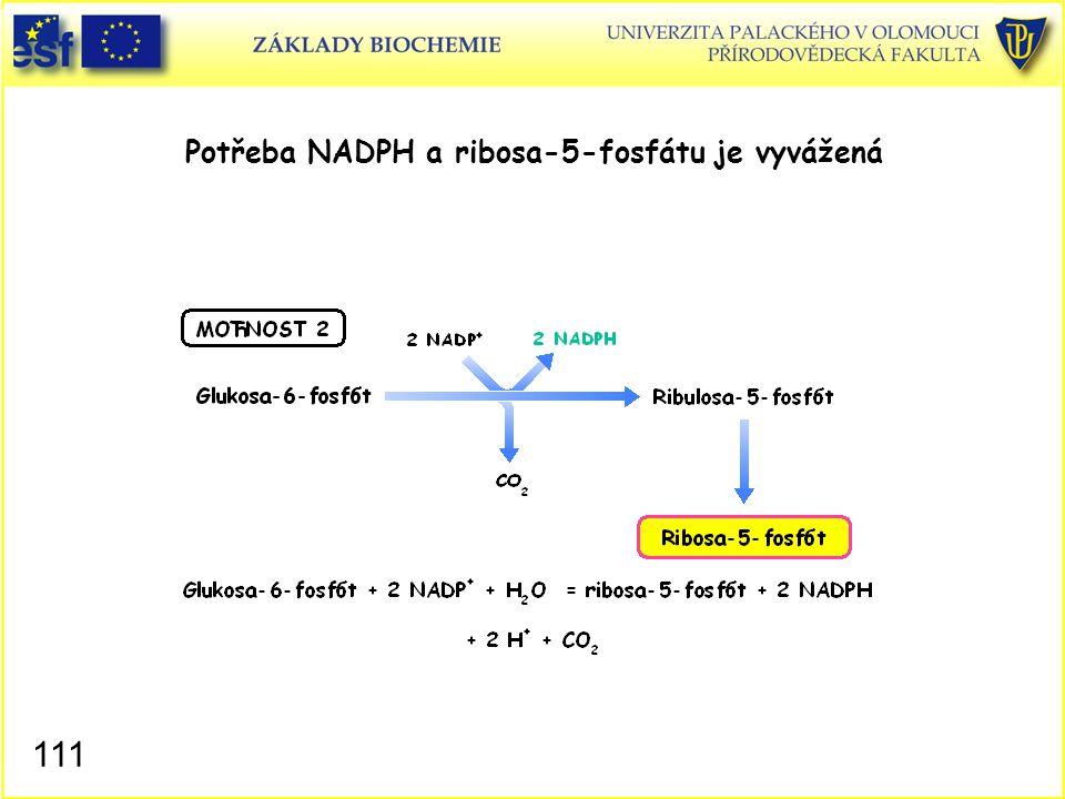 111 Potřeba NADPH a ribosa-5-fosfátu je vyvážená
