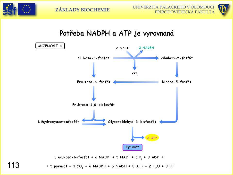 113 Potřeba NADPH a ATP je vyrovnaná
