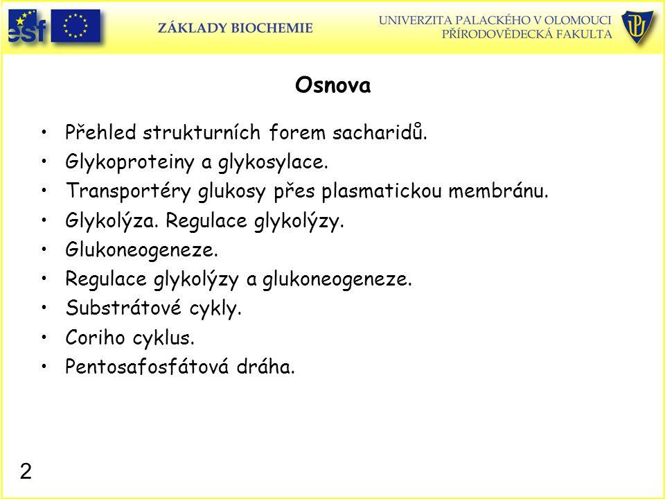 2 Osnova Přehled strukturních forem sacharidů. Glykoproteiny a glykosylace. Transportéry glukosy přes plasmatickou membránu. Glykolýza. Regulace glyko