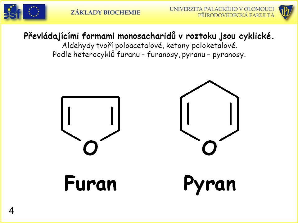 4 Převládajícími formami monosacharidů v roztoku jsou cyklické. Aldehydy tvoří poloacetalové, ketony poloketalové. Podle heterocyklů furanu – furanosy