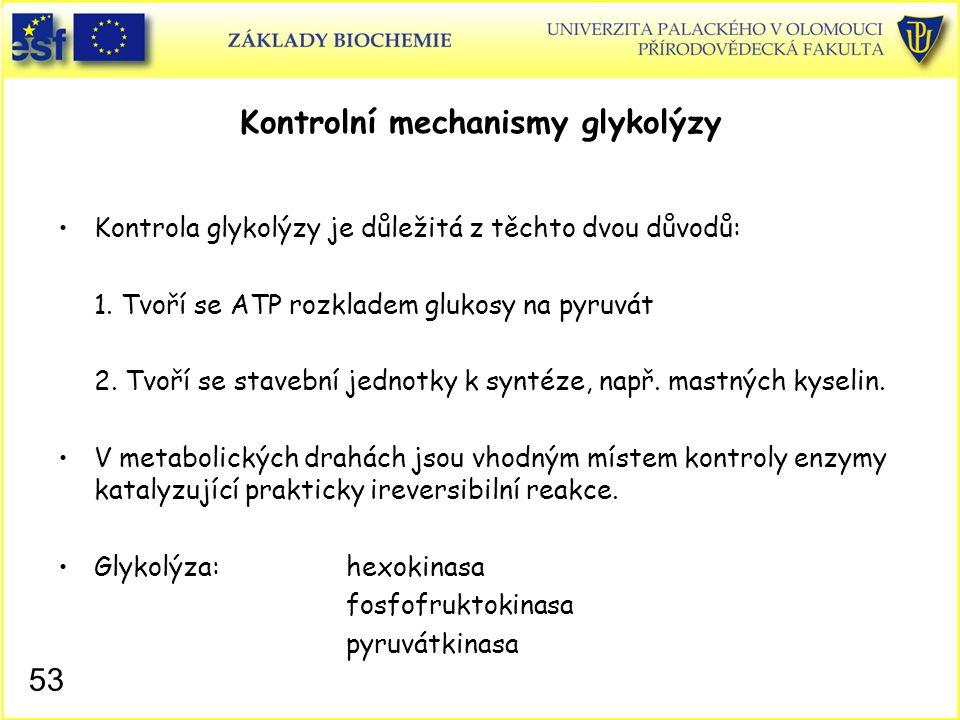 53 Kontrolní mechanismy glykolýzy Kontrola glykolýzy je důležitá z těchto dvou důvodů: 1. Tvoří se ATP rozkladem glukosy na pyruvát 2. Tvoří se staveb