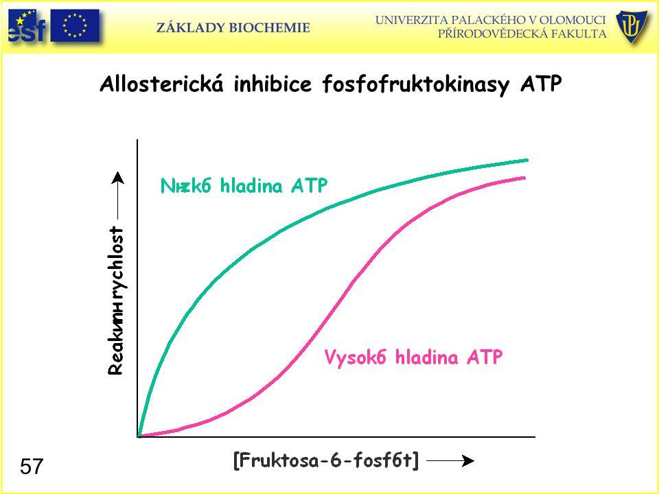 57 Allosterická inhibice fosfofruktokinasy ATP