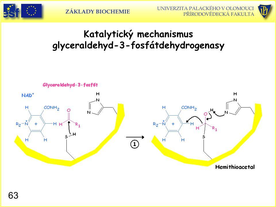 63 Katalytický mechanismus glyceraldehyd-3-fosfátdehydrogenasy