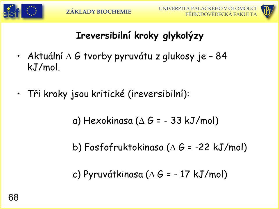 68 Ireversibilní kroky glykolýzy Aktuální  G tvorby pyruvátu z glukosy je – 84 kJ/mol. Tři kroky jsou kritické (ireversibilní): a) Hexokinasa (  G =