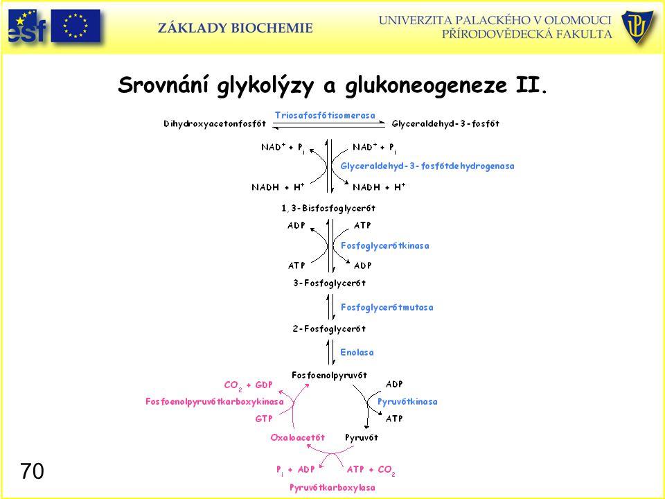 70 Srovnání glykolýzy a glukoneogeneze II.