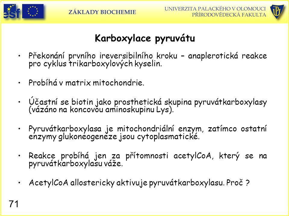71 Karboxylace pyruvátu Překonání prvního ireversibilního kroku – anaplerotická reakce pro cyklus trikarboxylových kyselin. Probíhá v matrix mitochond