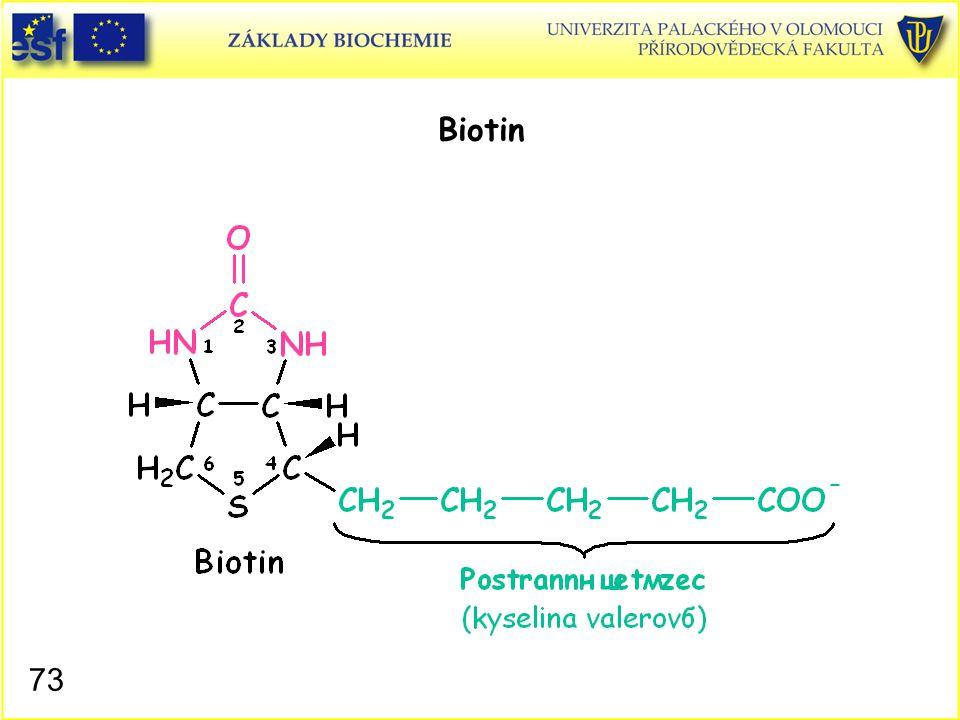 73 Biotin