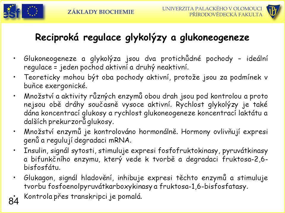84 Reciproká regulace glykolýzy a glukoneogeneze Glukoneogeneze a glykolýza jsou dva protichůdné pochody – ideální regulace = jeden pochod aktivní a d