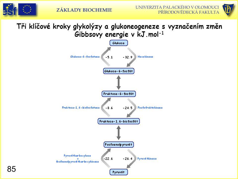 85 Tři klíčové kroky glykolýzy a glukoneogeneze s vyznačením změn Gibbsovy energie v kJ.mol -1