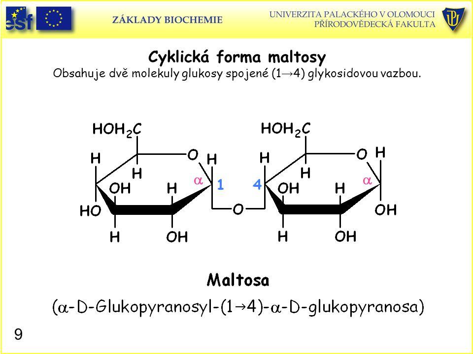9 Cyklická forma maltosy Obsahuje dvě molekuly glukosy spojené (1 → 4) glykosidovou vazbou.