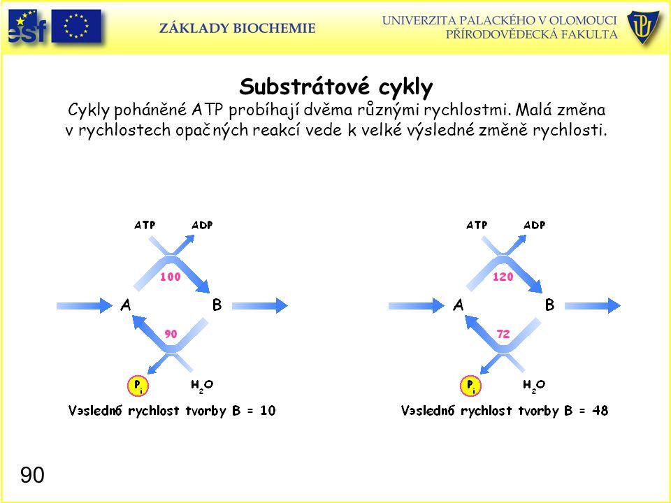 90 Substrátové cykly Cykly poháněné ATP probíhají dvěma různými rychlostmi. Malá změna v rychlostech opačných reakcí vede k velké výsledné změně rychl