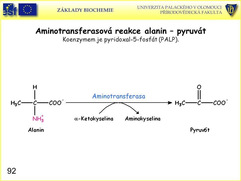 92 Aminotransferasová reakce alanin – pyruvát Koenzymem je pyridoxal-5-fosfát (PALP).
