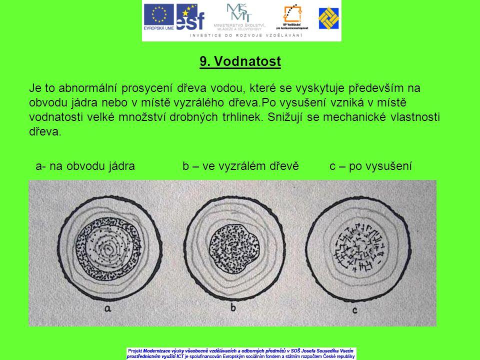 9. Vodnatost Je to abnormální prosycení dřeva vodou, které se vyskytuje především na obvodu jádra nebo v místě vyzrálého dřeva.Po vysušení vzniká v mí