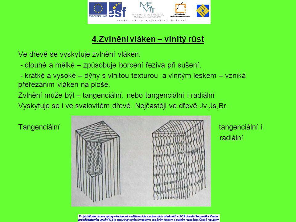 4.Zvlnění vláken – vlnitý růst Ve dřevě se vyskytuje zvlnění vláken: - dlouhé a mělké – způsobuje borcení řeziva při sušení, - krátké a vysoké – dýhy