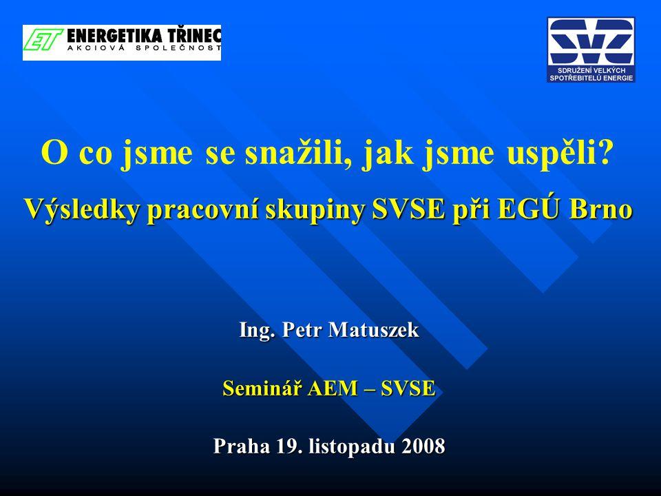 Výsledky pracovní skupiny SVSE při EGÚ Brno O co jsme se snažili, jak jsme uspěli.