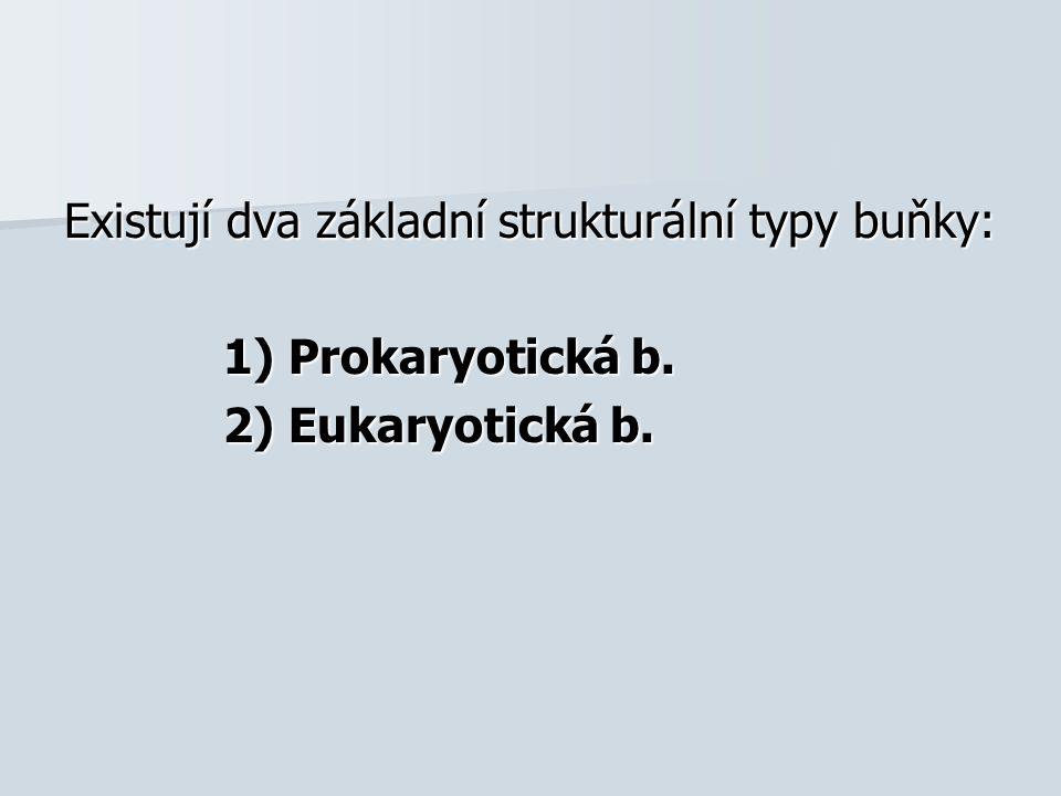 Existují dva základní strukturální typy buňky: 1) Prokaryotická b. 2) Eukaryotická b.
