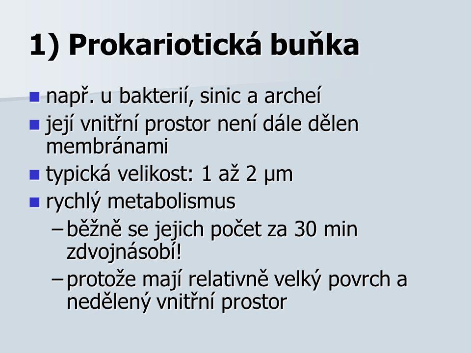 1) Prokariotická buňka např. u bakterií, sinic a archeí např.