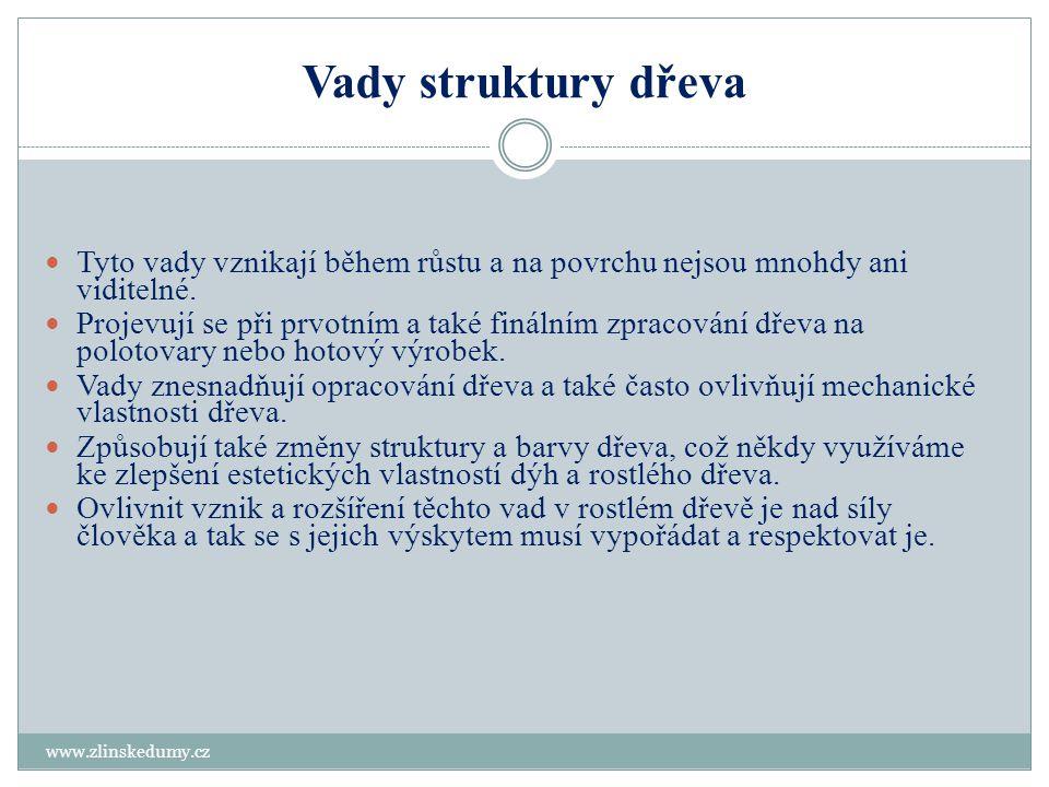 Vady struktury dřeva www.zlinskedumy.cz - dřeň, dvojitá dřeň - vnitřní běl dvojitá - točivost vláken - zvlnění vláken - závitek - prosmolení - reakční dřevo - vodnatost - nepravé jádro