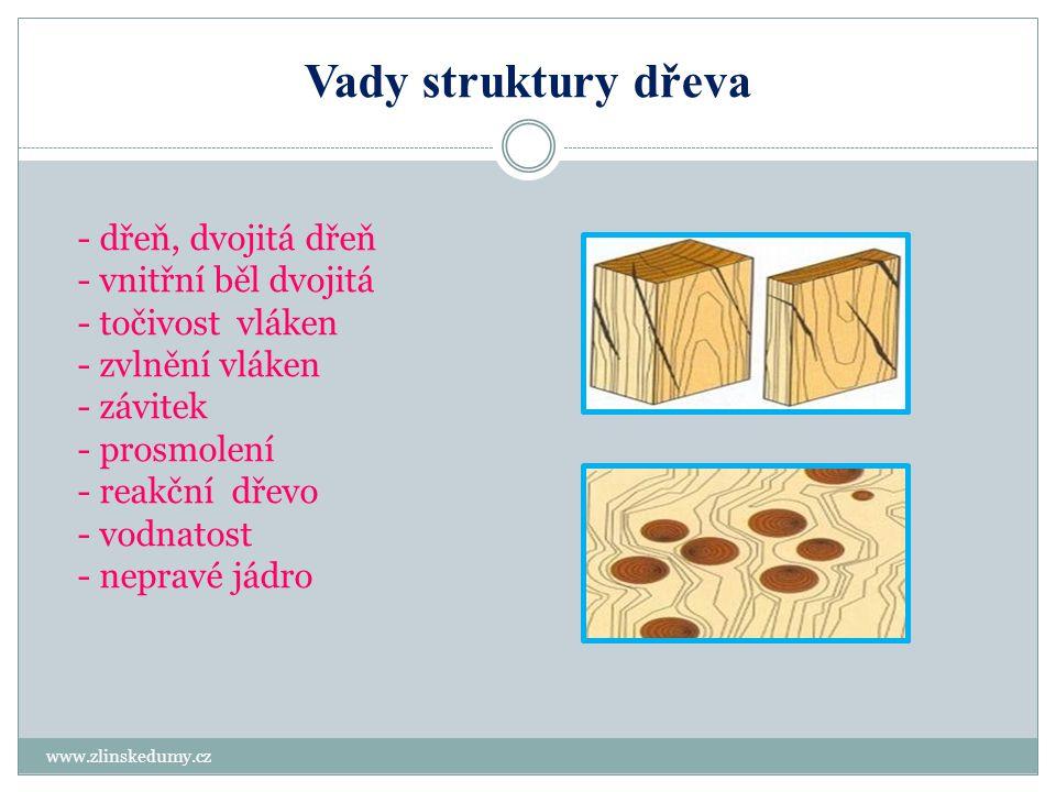 Dřeň, vnitřní běl, točivost vláken www.zlinskedumy.cz Dřeň nachází se ve středu kmene a tvoří první letokruh, odlišuje se barvou a je vždy tmavší než okolní dřevo.