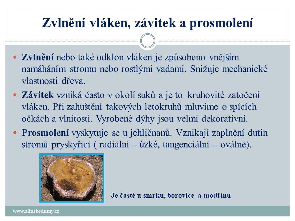 Reakční dřevo, vodnatost a nepravé jádro www.zlinskedumy.cz Reakční dřevo je tlakové (jehličnany) a tahové (listnáče).