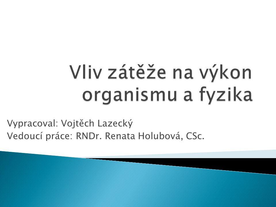 Vypracoval: Vojtěch Lazecký Vedoucí práce: RNDr. Renata Holubová, CSc.