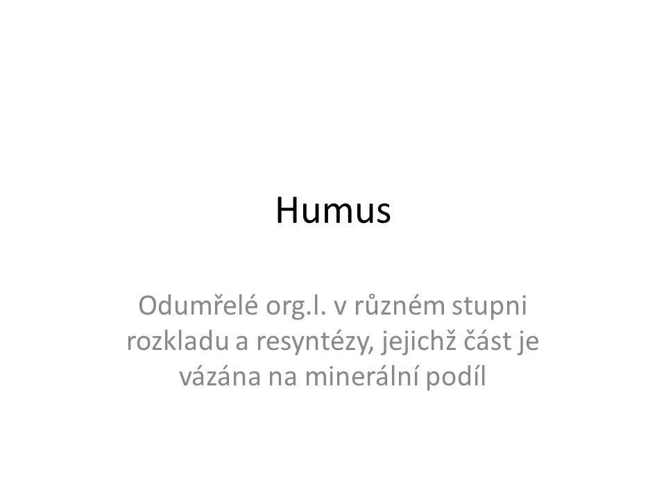 Humus Odumřelé org.l. v různém stupni rozkladu a resyntézy, jejichž část je vázána na minerální podíl