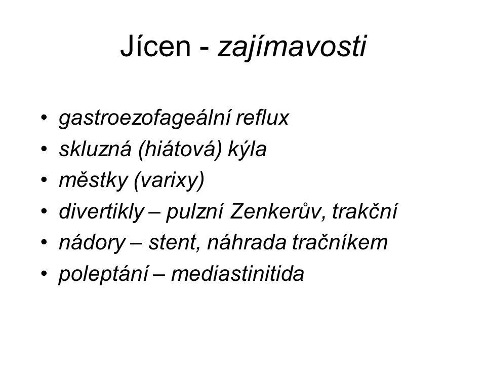 Jícen - zajímavosti gastroezofageální reflux skluzná (hiátová) kýla městky (varixy) divertikly – pulzní Zenkerův, trakční nádory – stent, náhrada tračníkem poleptání – mediastinitida