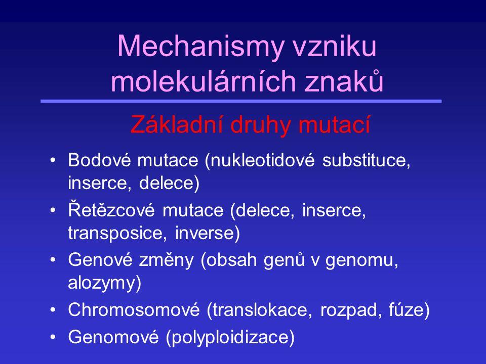 Mechanismy vzniku molekulárních znaků Bodové mutace (nukleotidové substituce, inserce, delece) Velká část mutací na pozorovatelných na molekulární úrovni se na úrovni fenotypu neprojeví a je tedy selekčně neutrálních.